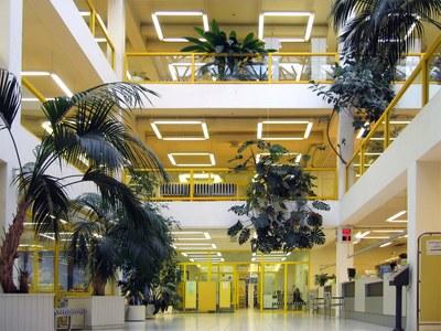 Tervetuloa Keltainen kirjasto -verkkonäyttelyyn!