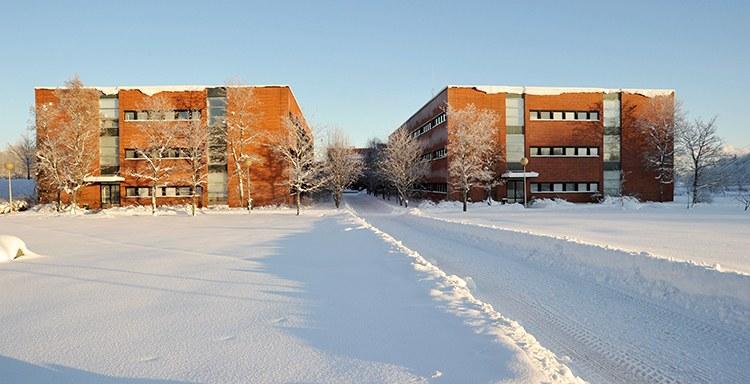 Mattilanniemen B- ja C-rakennukset