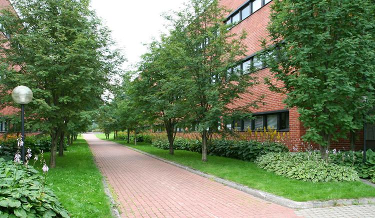 Mattilanniemen puutarha.jpg